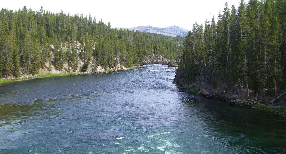 Rio de Yellowstone