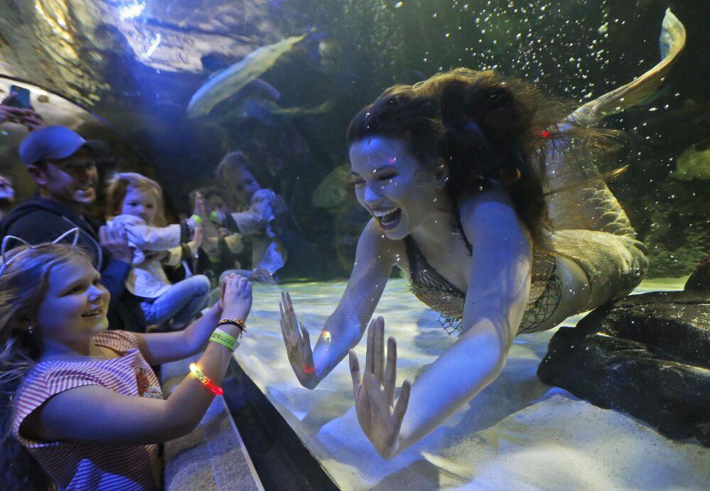 Meninas-sereias durante um show no Oceanário no estado da Virginia