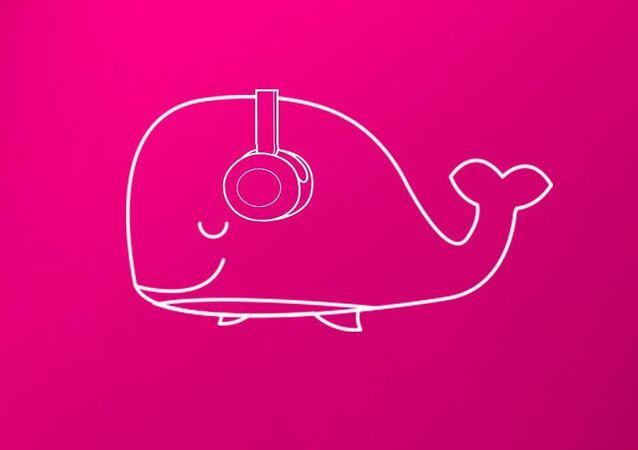 Campanha Baleia Rosa