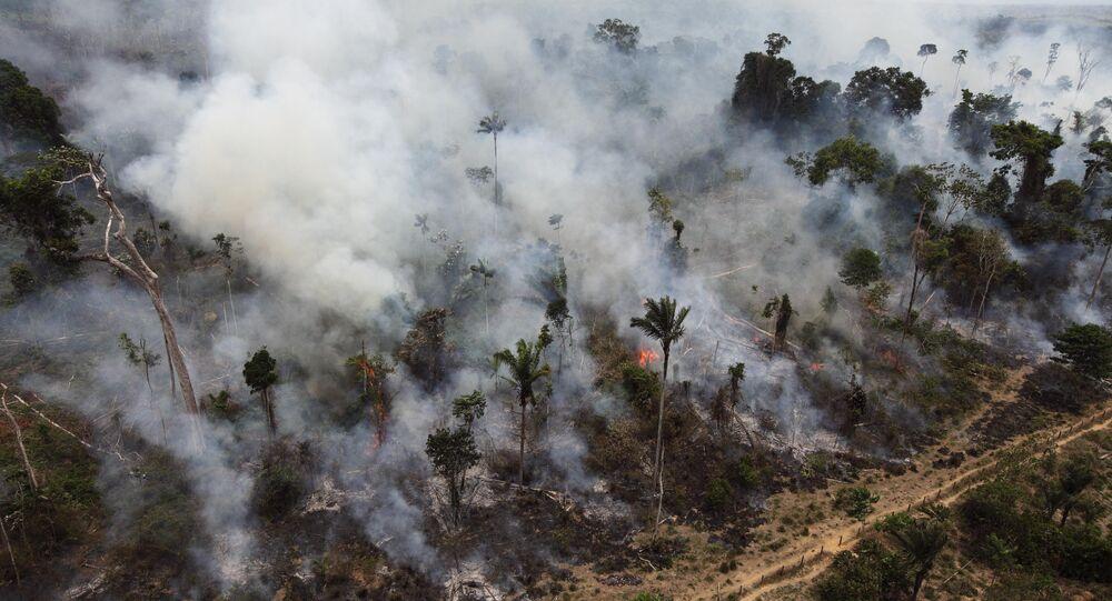 Desmatamento da Amazônia (foto de arquivo)