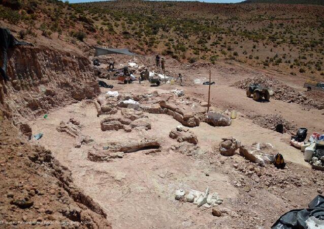 Cientistas desenterrando Patagotitan de rochas do período Cretáceo