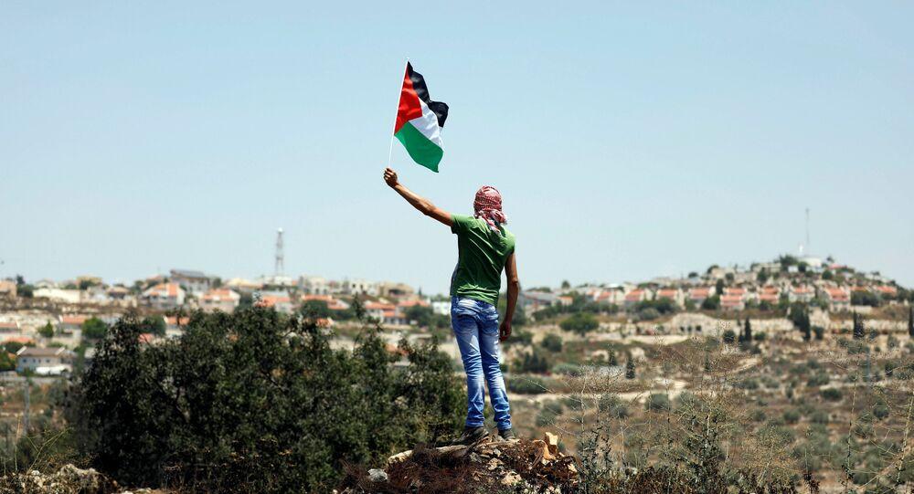Manifestante com a bandeira da Palestina (arquivo)