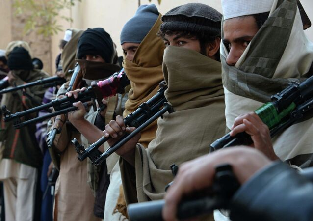 Ex-militantes afegãos do movimento Talibã antes de depor as armas (foto de arquivo)