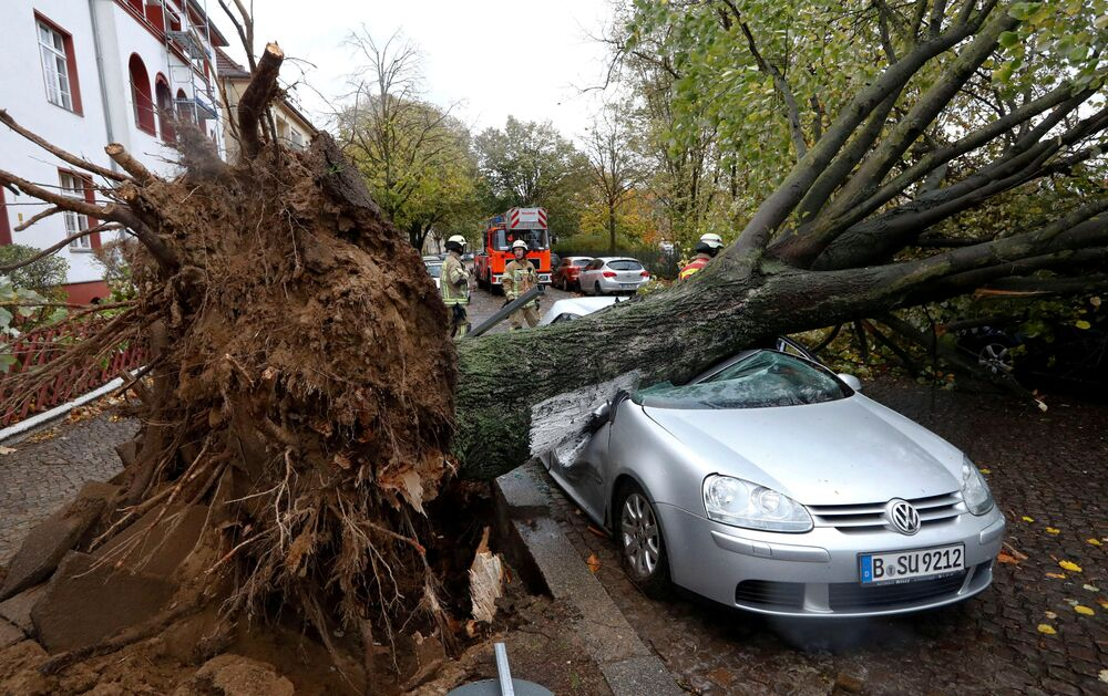 Bombeiros perto de um árvore que caiu na sequência da tempestade Herwart em Berlim, na Alemanha